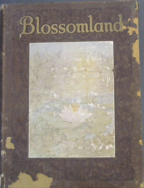 Image for Blossomland