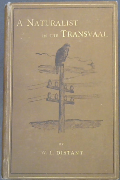 Image for A Naturalist in The Transvaal