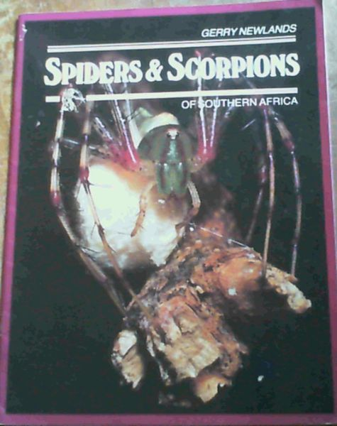 Image for Spiders & Scorpions Of Southern Africa
