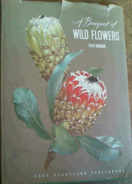 Image for A Bouquet of Wild Flowers