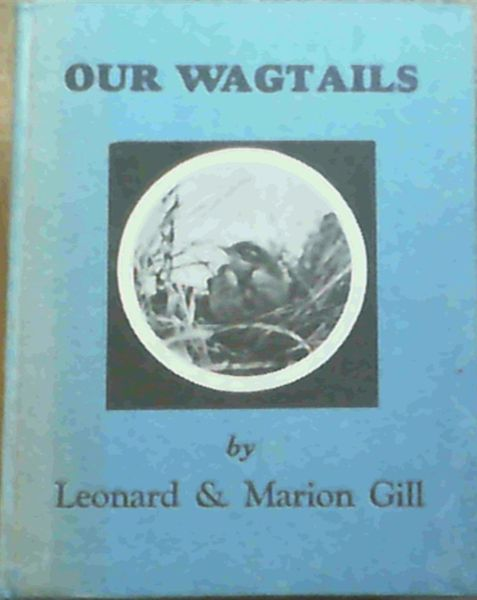 Image for Our Wagtails