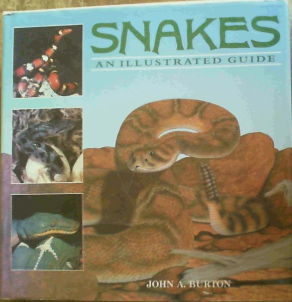 Image for Snakes; An Illustrated Guide