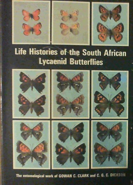 Image for Life histories of the South African Lycaenid butterflies