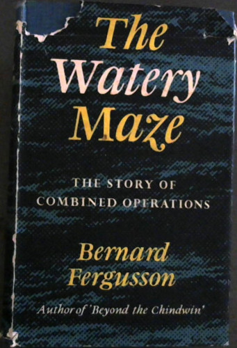 Image for The Watery Maze