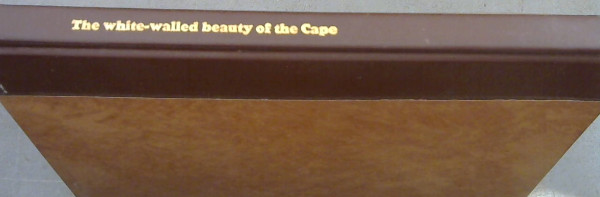 Image for The white-walled beauty of the Cape : A selection of photographs exhibited by the Simon van der Stel Foundation in Cape Town and Preetoria, October 1963