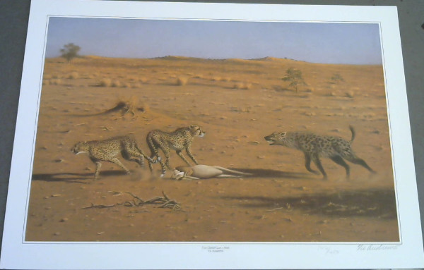 "Image for Wild Life Prints : Vic Andrews : ""Dangerous Moment"", ""A Welcome for The Hunter"", ""Two Cheetahs Lose A Meal"" - Limited"
