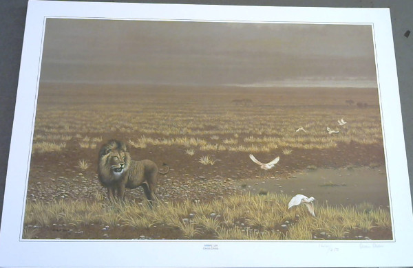 "Image for Wild Life Prints : Owen Owen : ""Big Brother"", ""Solitary Lion"" - Limited"