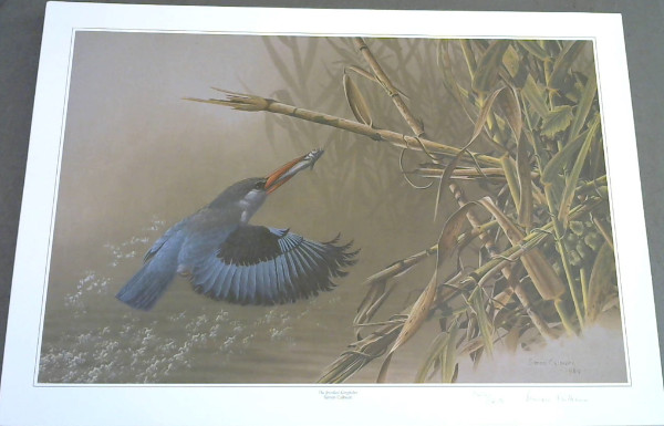 "Image for Wild Life Prints : Simon Calburn : ""The Cape Forest Chortler"", ""The Jewelled Kingfisher"" - Limited"