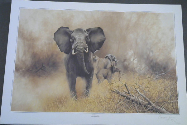 "Image for Wild Life Prints : Graham Jahme : ""The Bluff"", ""Mock Charge"" - Limited"