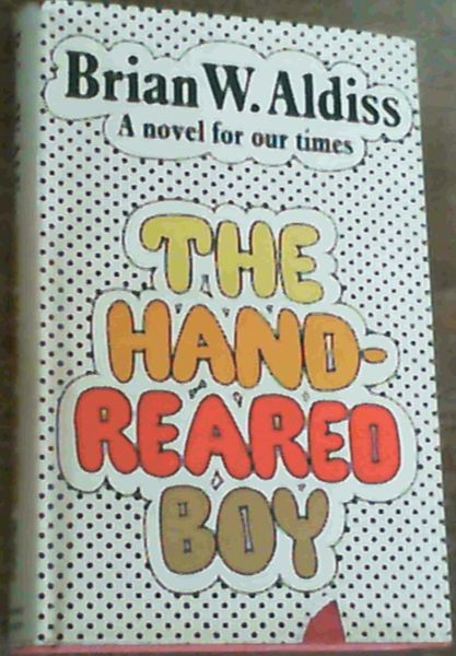 Image for The Hand-Reared Boy : A Novel for Our Times