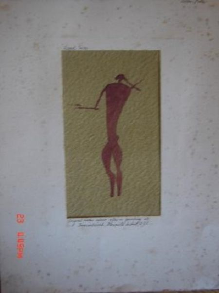 Image for The Amazing Bushman (Art in South Africa)